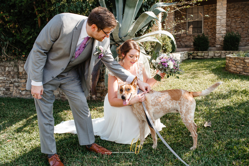 weddings and dogs