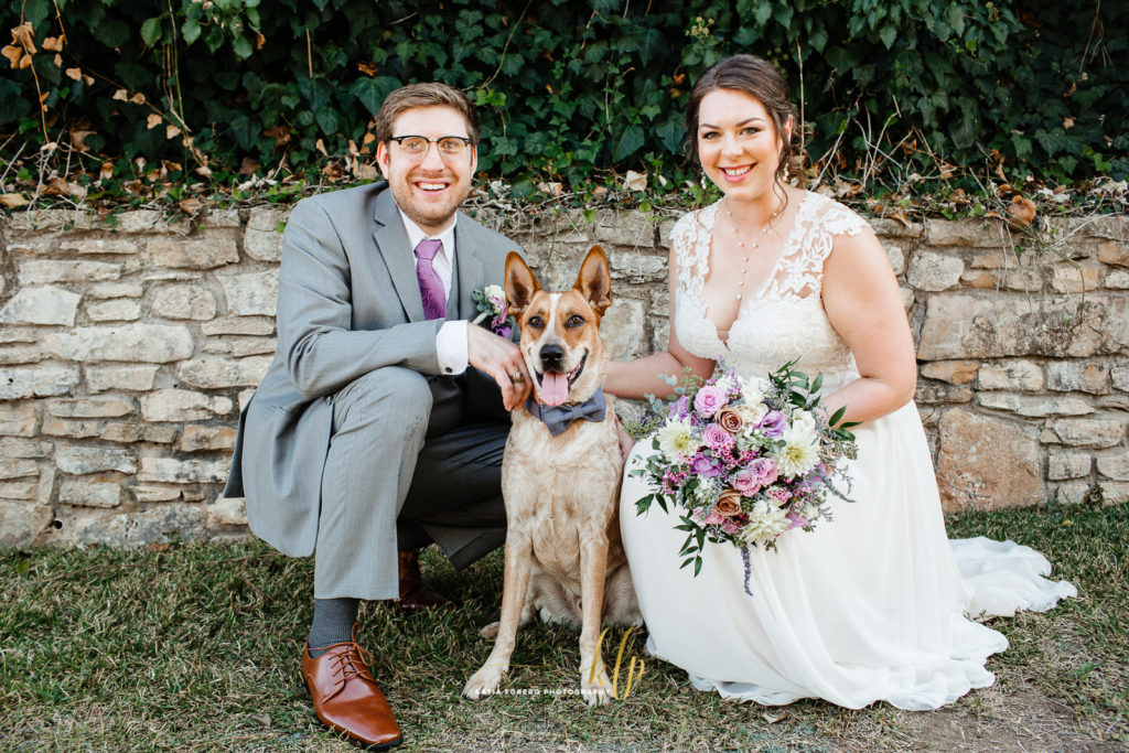 dogs weddings