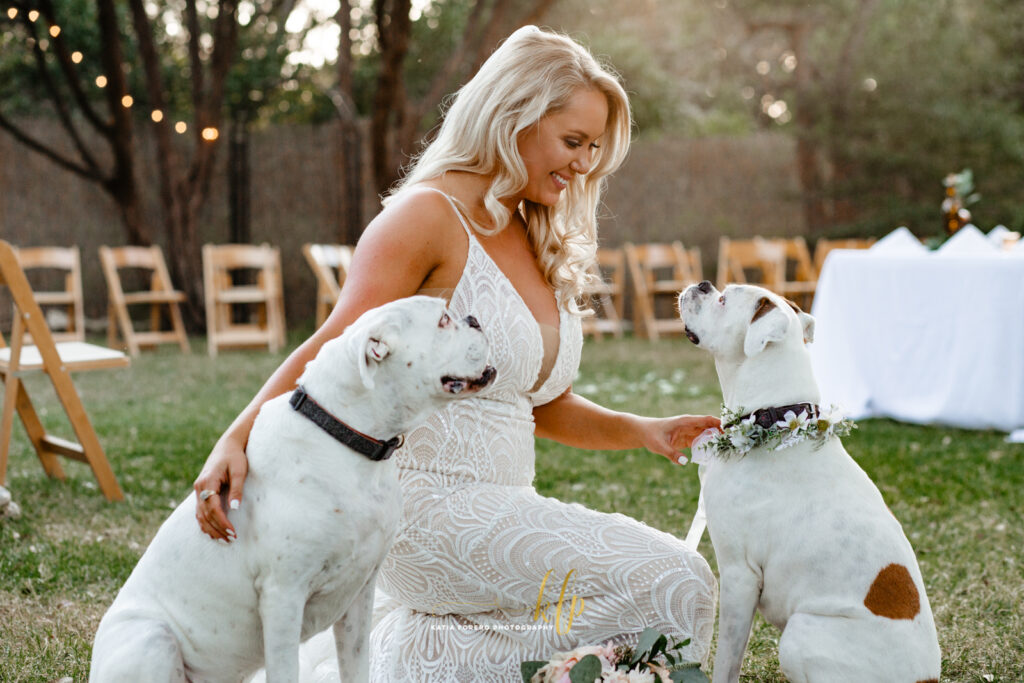 austin loves their dogs